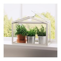 SOCKER Greenhouse  - IKEA - Hoping to have a nice window space to display some succulents. Want to put them in this little greenhouse to keep little kitty paws from getting into trouble.