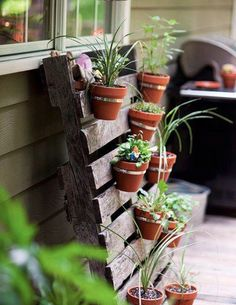 Pequeno jardim vertical.