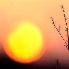 La pausa observada en el calentamiento global no durará mucho  Leer más:  La pausa observada en el calentamiento global no durará mucho  http://www.europapress.es/ciencia/noticia-pausa-observada-calentamiento-global-no-durara-mucho-20130920192631.html#AqZ1Z9VMpZl9noZP Consigue Links a tus Contenidos en  http://www.intentshare.com