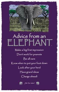 Advice from an Elephant Frameable Art Card – Your True Nature, Inc. Elephant Spirit Animal, Elephant Quotes, Elephant Facts, Elephant Love, Quotes About Elephants, Advice Quotes, Life Advice, True Quotes, Elephants Never Forget