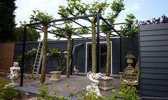 Met de dakplataan constructie van De Kim Hekwerk kunnen de takken van de dakboom eenvoudig worden geleid en ondersteund. Wij informeren u graag.