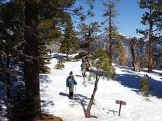 Badger Pass to Dewey Point Snowshoe Hike, Yosemite
