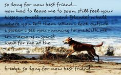 So long for now best friend. :(