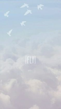 Fly Wallpaper ♥