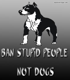 It's not the dog's fault it is violent. It was trained to be that way.