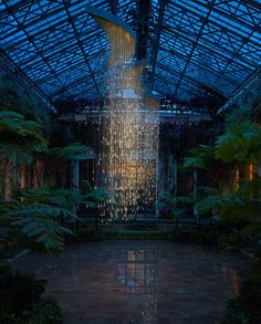 This would be a lovely idea for a conservatory - Light installation by Bruce Monro at Longwood Gardens, Pennsylvania