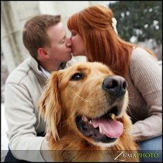 gotta try with Bentley! Winter Engagement Photos With Dog, Winter Photos, Engagement Pictures, Wedding Pictures, Xmas Pics, Xmas Pictures, Dog Pictures, Couple Photography, Engagement Photography
