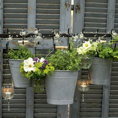zinc bucket planters on repurposed shutters
