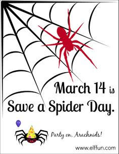 Image result for save a spider day