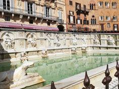 Siena Siena, Louvre, Italy, Building, Travel, Painting, Italia, Viajes, Buildings