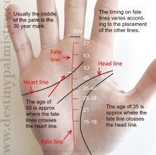 Fate Line Timing Events Scale In Palmistry Palmistry Palm