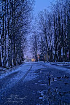 BLUE ROAD - finland kauhava - street tree winter snow frosty evening