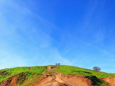 Bernal Heights Park #flickr #photo #iphoneography #usa