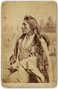Chief Goose, Sioux - D. F. Barry, 1885