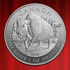 FineSilverCoinsUK , ROYAL CANADIAN MINT CANADIAN WOOD BISON, WILDLIFE SERIES, 1OZ SILVER COIN, 2013 in stock and has just been added to http://www.finesilvercoins.co.uk/canadian-wood-bison-wildlife-series-1oz-silver-coin-2013/