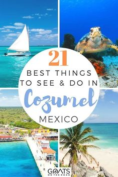Updated There are lots of things to do in Cozumel, Mexico's top island! Here's a list of the best activties, beaches, day trips, restaurants & more. Tulum Mexico, Cozumel Mexico Cruise, Cozumel Excursions, Mexico Resorts, Mexico Vacation, Mexico Travel, Spain Travel, Maui Vacation, Paradise Beach Cozumel