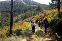 A Serra da Gardunha oferece um cenário natural único. Parta à descoberta! | The Serra da Gardunha offers a unique natural setting. Come to Discovery!
