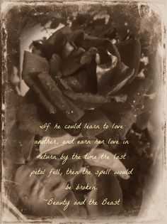 Beauty & the Beast quote