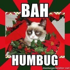 Merry christmas from grumpy cat. grumpy cat speaks the truth. Merry Christmas Meme, Grumpy Cat Christmas, Funny Christmas Sweaters, Christmas Music, Christmas Humor, Christmas Images, Christmas Quotes, Christmas Time, Christmas Stuff