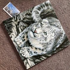 """""""Snow Leopard"""" Print from 2014 💪 launched on the box canvas as well in two sizes 24"""" x 24"""" and 40"""" x 40"""" very happy with the results thanks…"""