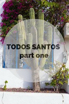 Todos Santos is a quaint Mexican village located an hour from Cabo San Lucas and La Paz.
