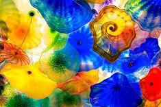 coolest glass sculpture  so beautiful