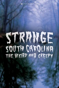Take a trip to South Carolina and check out some of these unique oddities