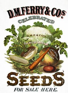 Seed Company Poster, by Granger Garden Catalogs, Plant Catalogs, Seed Catalogs, Vintage Diy, Vintage Labels, Vintage Ephemera, Vintage Stuff, Vintage Images, Vintage Gardening