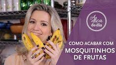 Como eliminar os mosquitinhos ou mesquinhas de frutas (drosophila) sem usar inseticida. Veja a armadilha ecológica que a Flávia Ferrari mostra neste vídeo do #aDicadoDia