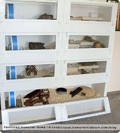 Bookshelf cage. Good idea for the snakes