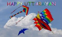 Makar Sankranti or Uttarayan stands as first, vital festival celebrated in India on 14-15th January with playing kites. Let's check out its significance!