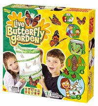 Live butterfly garden! See them grow!