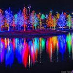 Vitruvian Park - Dallas, TX - Vitruvian Lights by Matt Pasant