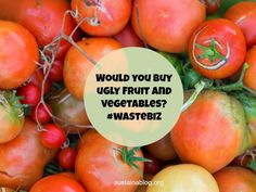Would you buy ugly fruit and vegetables?  via @sustainablog