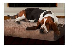 Extra Large PAW Memory Foam Dog Bed With Removable Cover 46 x 27 >>> Read more reviews of the product by visiting the link on the image. (Note:Amazon affiliate link)