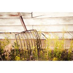 Rustic Art, pitch fork, hay fork, farm tool, still life, rustic,... ($60) ❤ liked on Polyvore featuring home, home decor, wall art, mint green home decor, brown home decor, photography posters, handmade home decor and rustic home accessories