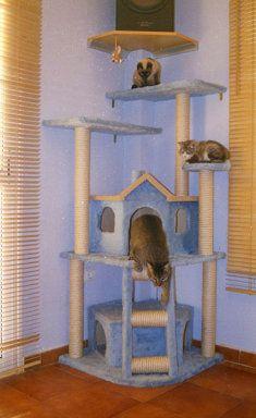 rascadores (4) | Cuidar de tu gato es facilisimo.com