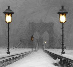 Winter In Brooklyn • Stefan Kuhn —— Absolutely love how he painted the light and the lampposts.  I had to do a double-take, thinking at first that this was a photograph (viewed from the size of a thumbnail), but enlarged... it's  breathtaking.