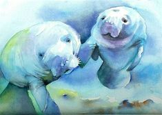 Kids love that, too, and it is sometimes a true learning experience in their opinion. With an adult aid, younger kids would have the capability to complete it. Watercolor Fish, Watercolor Animals, Watercolor Paintings, Watercolors, Sea Turtle Art, Sea Cow, Jüngstes Kind, Wildlife Art, Beach Art