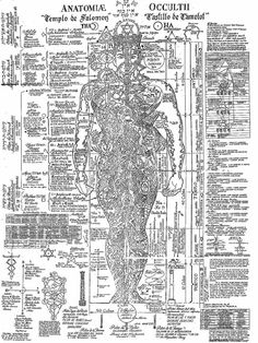 The artistic anatomy of trees pdf
