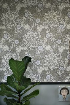 Det blev Morris Seaweed i hallen, bjuder på en liten sneak peak! I Wallpaper, Pattern Wallpaper, William Morris Tapet, Arts And Crafts Movement, Colour Schemes, Color Mixing, Prints, Inspiration, Painting