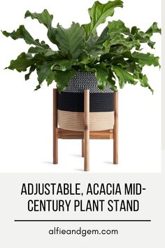 Plant Stand #plant #planting #plantstand #diyproject #diy