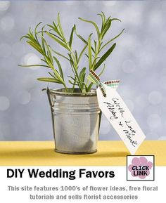 Miniature plants or herbs potted in a galvanized pail and tied with a message tag.