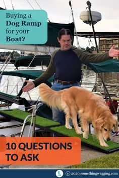 What's the best dog ramp to help your dog get on and off the boat? Or up and down the companionway? Ask these questions before you shop. Sailboat Living, Living On A Boat, Pet Ramp, Buy A Dog, Best Boats, Marine Environment, Pet Travel, Health And Safety, Dog Accessories