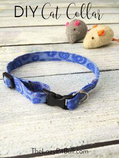 Make this fun DIY cat collar and other great #NutrishCatCrafts with @nutrishforpets #ad | http://www.thelazypitbull.com/diy-cat-collar-nutrish-cat-crafts/
