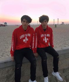 - The wolf that kills Alan and Alex Stokes Twin Guys, Celebrity Twins, Famous Youtubers, Boy Celebrities, Brent Rivera, Cute White Boys, Twin Brothers, New Love, Hot Boys