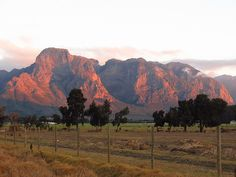 The mountains in are magnetic, they draw you in. The Beautiful Country, Beautiful Places, Art Walk, Landscape Paintings, Landscapes, Rock Climbing, Cape Town, South Africa, Scenery