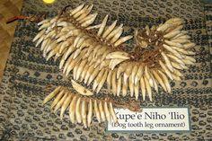 Kaua'i - Koke'e State Park: Koke'e Natural History Museum