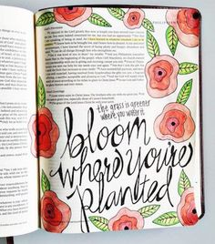 These artists turned their Bibles into beautiful works of art.