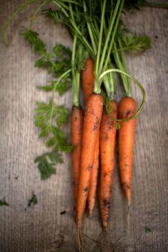 carottes ... carrots